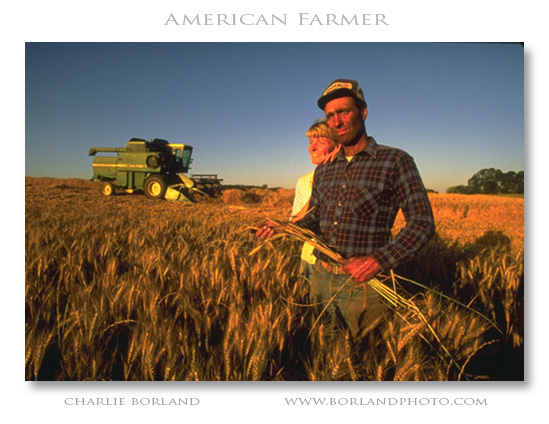 wheat farmer