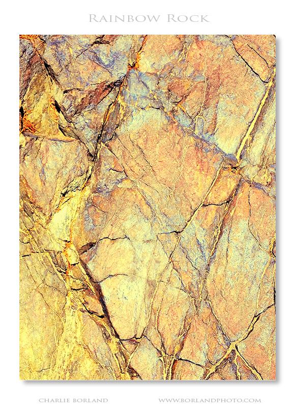 az_quartzsite_MG_31852