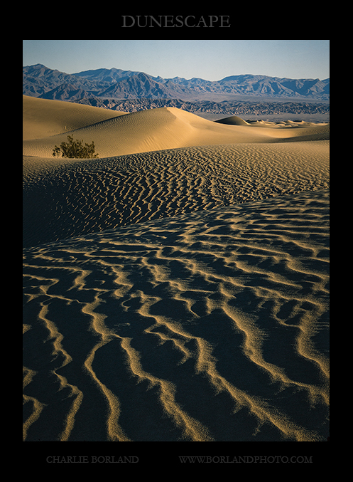 ca_death_valley_dunes_MG_8675